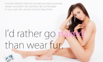 La Vidéo du Jour #24/02/13:Des animaux habillés en humains!
