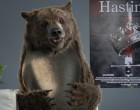 La vidéo du jour #04/02/13:L'ours de Canal + grand vainqueur!