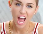 Miley Cyrus:Elle pose entièrement nue!