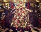 Top 10 des plus beaux sapins de Noël de stars