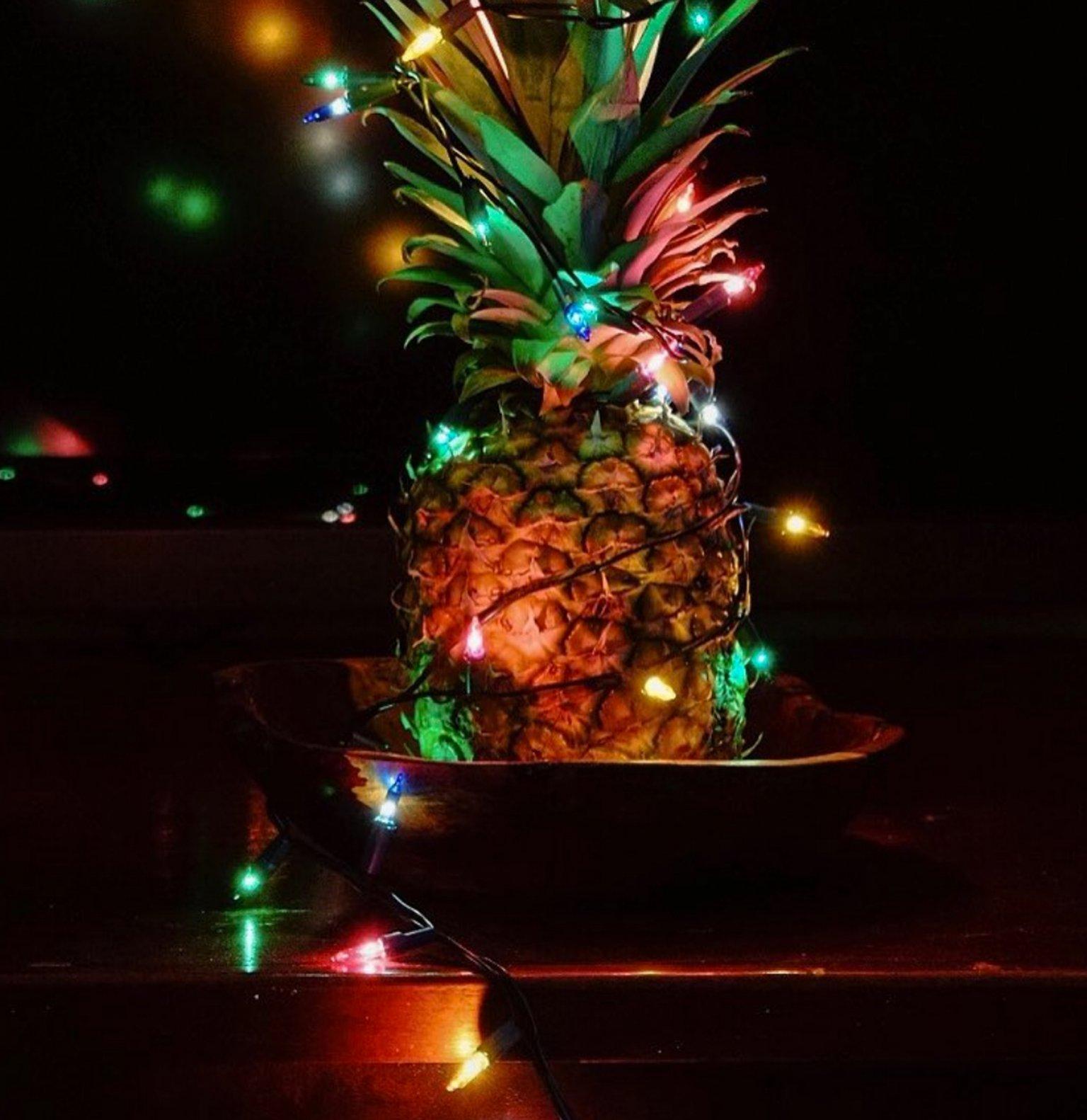 ananas-sapin-4