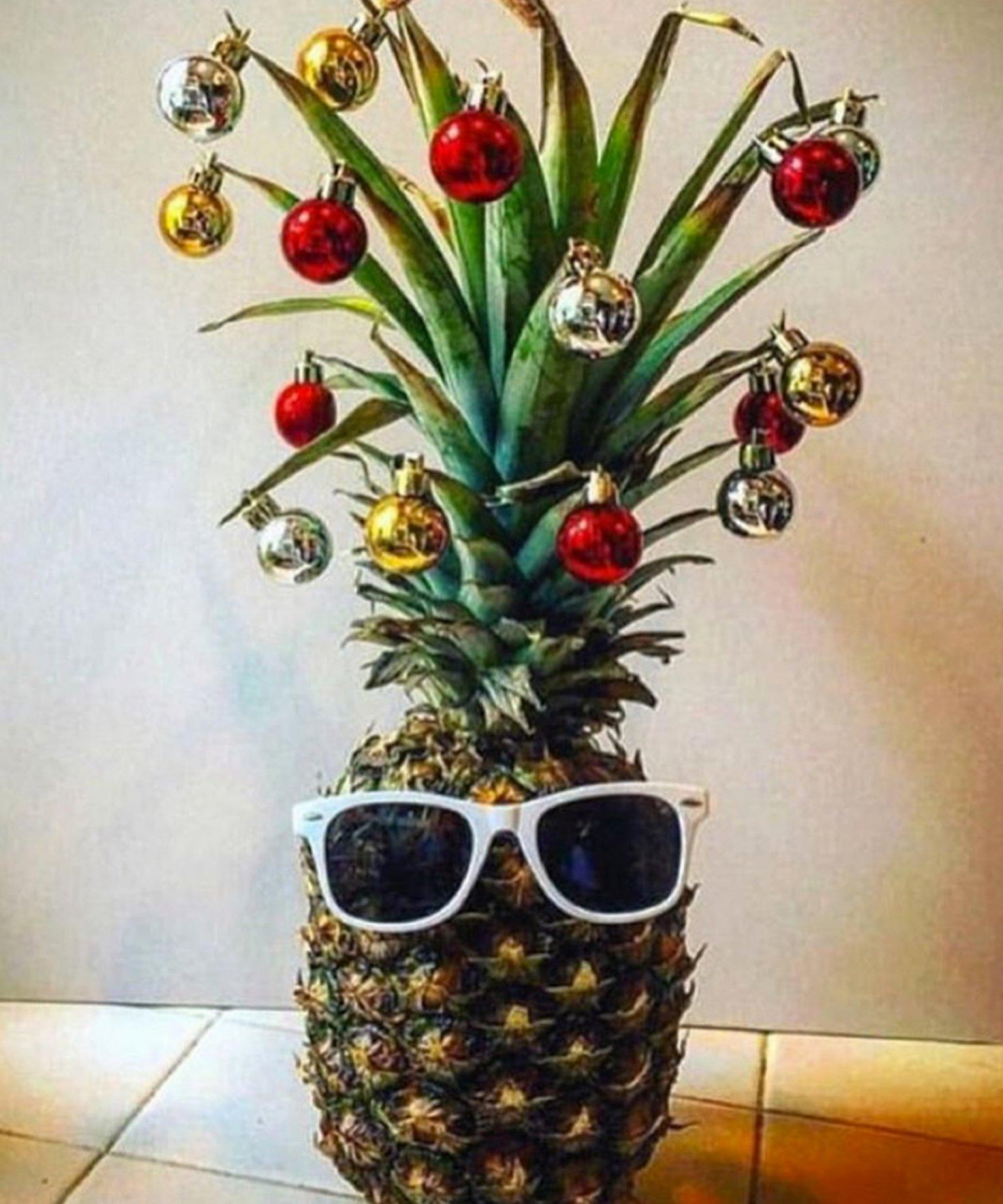 ananas-sapin-9