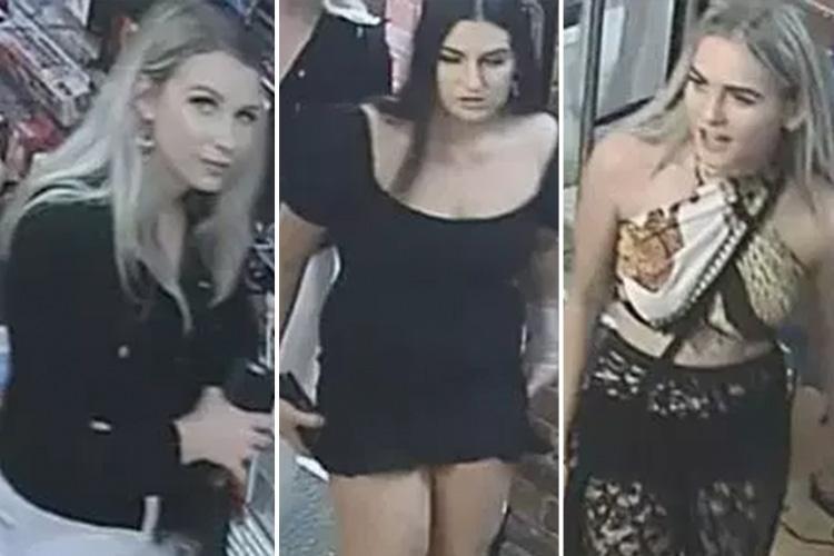 Australie : ces trois femmes voulaient vraiment voler des sextoys
