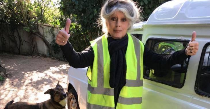 Le nouvel engagement très particulier de Brigitte Bardot